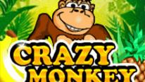 Игровой автомат Crazy Monkey в Поинтлото