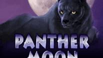 Игровой аппарат Пантера в казино Point Loto