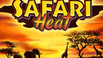 Safari Heat в Поинтлото казино