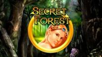 Игровой автомат Secret Forest в Point Loto