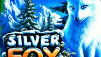 Silver Fox в казино Point Loto