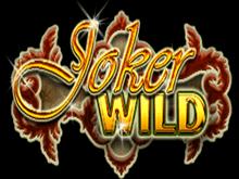 Joker Wild в Поинтлото казино