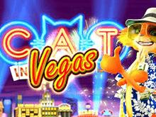 Онлайн-аппарат Cat In Vegas в Поинт Лото