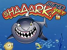 Игровой автомат Shaaark Superbet в Поинтлото казино